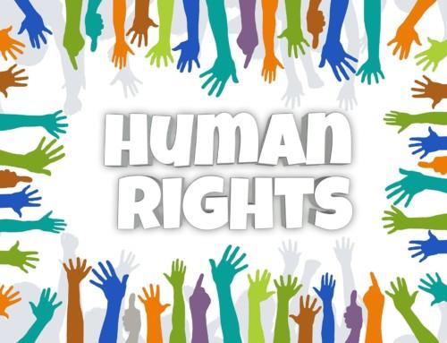 Menschenrechte wahren – Digitaler Workshop der Q1a