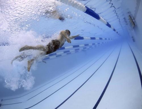 Schwimmen – Wie ein Fisch im Wasser…